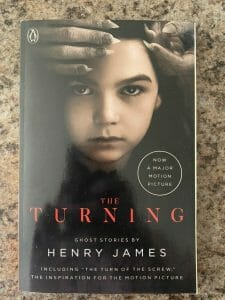 Book cover for The Turning